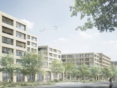 Pièce urbaine B (Aravis-Mole), Communaux d'Ambilly, Thônex